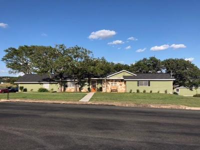 Fredericksburg Single Family Home For Sale: 224 W Lower Crabapple Rd