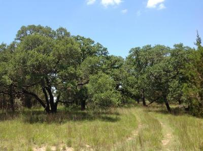 Fredericksburg TX Ranch Land For Sale: $249,000