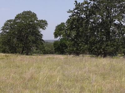 Ranch Land For Sale: 9207 S Hwy 87