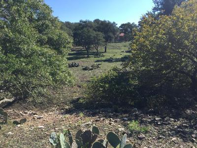 Ranch Land For Sale: J B Rd.