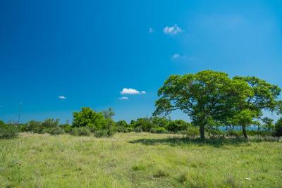 Fredericksburg TX Ranch Land For Sale: $1,560,000
