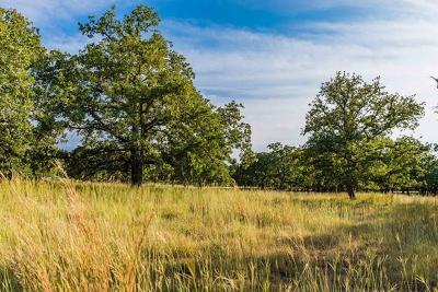 Fredericksburg TX Ranch Land For Sale: $1,795,000