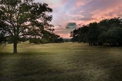 Gillespie County Single Family Home For Sale: 745 N Cowgirl Ranch Rd