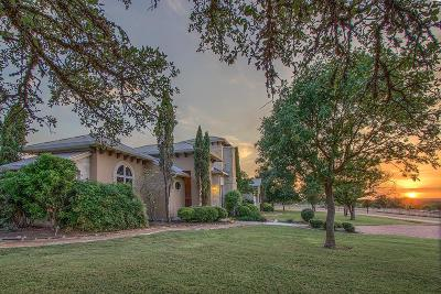 Gillespie County Single Family Home For Sale: 178 Funf Kinder Rd
