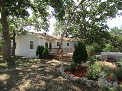 Blanco County Single Family Home Under Contract: 108 SW Oak Park Ln