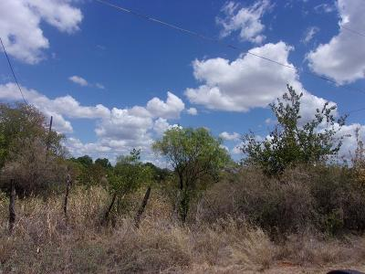 Llano Residential Lots & Land For Sale: E Wallace
