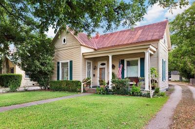 Fredericksburg Single Family Home For Sale: 313 W Austin St