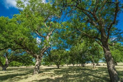 Fredericksburg TX Ranch Land For Sale: $1,150,000