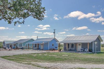 Gillespie County Single Family Home For Sale: 98 Betts Road
