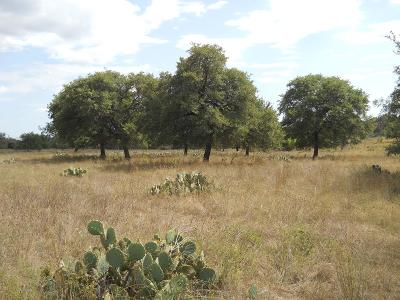 Fredericksburg TX Ranch Land For Sale: $371,550