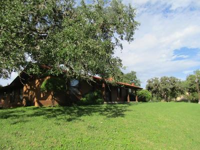Blanco County Single Family Home For Sale: 610 County Rd 102