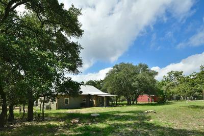 Fredericksburg Single Family Home For Sale: 3587 Grape Creek Rd