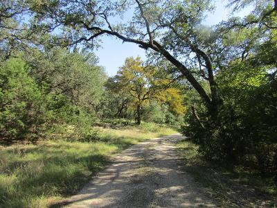 Blanco County Single Family Home Under Contract W/Contingencies: 490 SE Forest View Dr