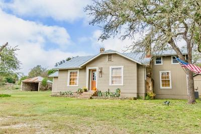 Gillespie County Single Family Home For Sale: 283 N Second St