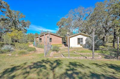 Fredericksburg Single Family Home For Sale: 2804 Lower Crabapple Rd