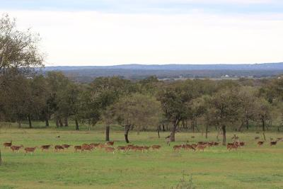 Fredericksburg TX Ranch Land For Sale: $348,740