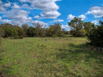 Harper Residential Lots & Land For Sale: S Ranch Rd 783