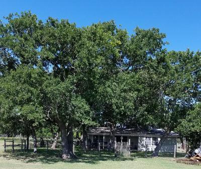 Gillespie County Single Family Home For Sale: 2081 Adobe Creek Rd