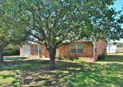 Gillespie County Single Family Home For Sale: 710 Dawn Lane