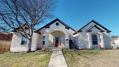 Fredericksburg Single Family Home For Sale: 1218 Spotted Fawn Trail