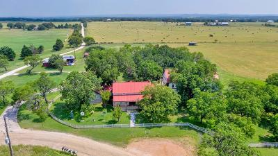 Gillespie County Single Family Home For Sale: 5138 Goehmann Lane