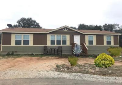 Blanco County Single Family Home For Sale: 125 SE Brianna Circle