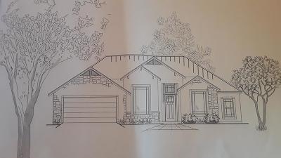 Fredericksburg Single Family Home For Sale: 707 Chinkapin Dr