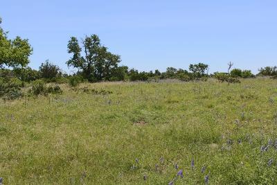 Fredericksburg Residential Lots & Land For Sale: Calle Del Sol Dr.