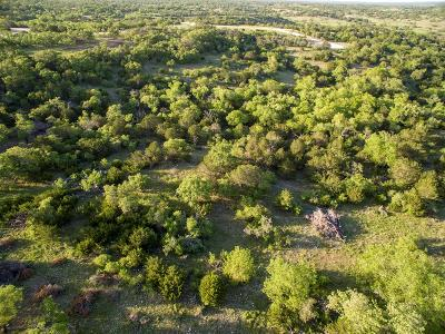 Fredericksburg Residential Lots & Land For Sale: S Cielo Vista Ct.