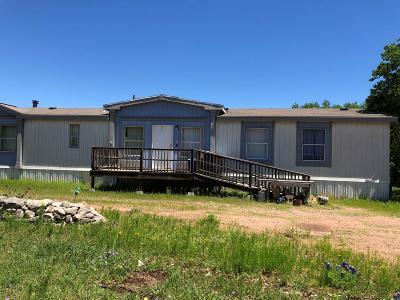 Fredericksburg TX Single Family Home For Sale: $319,500