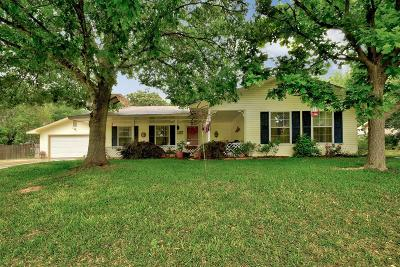 Gillespie County Single Family Home For Sale: 107 W Driftwood Dr