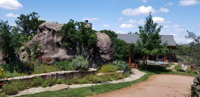 Llano County Single Family Home For Sale: 110 Oak Mtn Circle