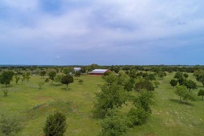 Blanco County Single Family Home For Sale: 997 Big Sandy Rd