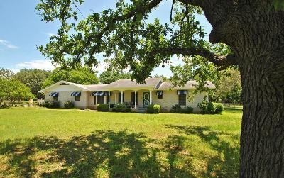 Gillespie County Single Family Home For Sale: 359 Primrose Lane