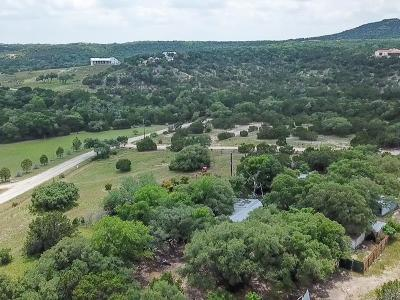 Blanco County Single Family Home For Sale: 130 Scenic View Dr