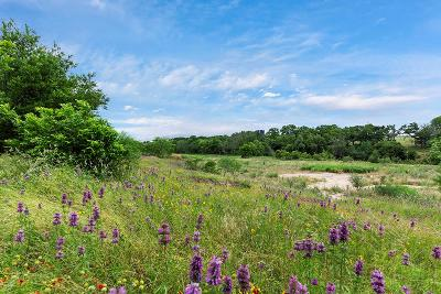 Fredericksburg Residential Lots & Land For Sale: 59 Old Kerr Hwy