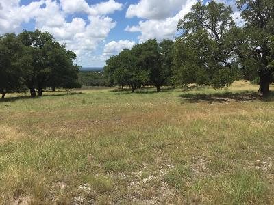 Residential Lots & Land For Sale: 606 Vista View Lane