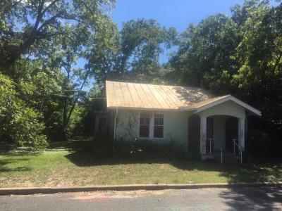 Fredericksburg Single Family Home For Sale: 215 Mistletoe St