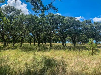 Stonewall Residential Lots & Land For Sale: Tbd Axis Circle
