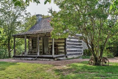 Single Family Home For Sale: 217 Mistletoe St