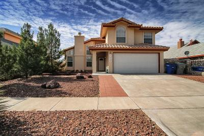 El Paso Single Family Home For Sale: 1464 Desierto Rico Avenue