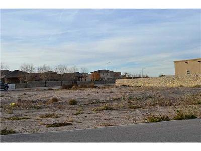 El Paso TX Single Family Home For Sale: $80,000