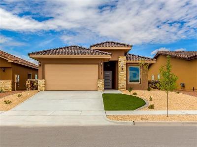 Horizon City Single Family Home For Sale: 13187 Wesleyan Ave
