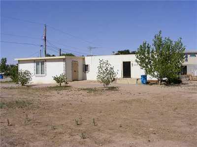 San Elizario Single Family Home For Sale: 1354 Beverly Ann Drive