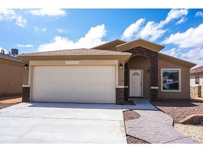 El Paso Single Family Home For Sale: 13034 Wesleyan Avenue