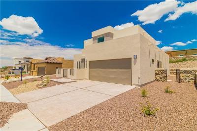 El Paso Single Family Home For Sale: 7255 Kiowa Creek Drive