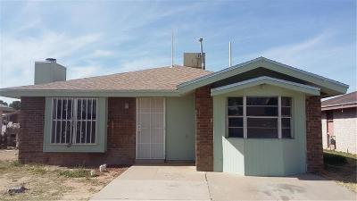 Socorro Single Family Home For Sale: 9806 Gifford Drive