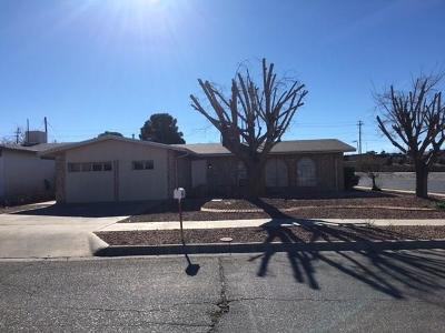 El Paso Single Family Home For Sale: 7024 Ramada Drive