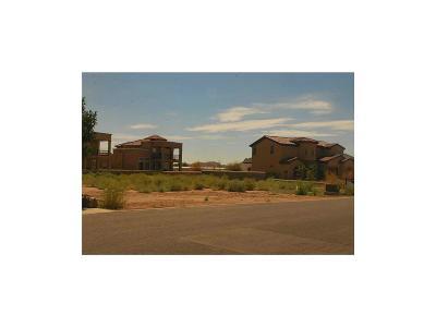 El Paso Single Family Home For Sale: 4016 Hacienda Roja Drive