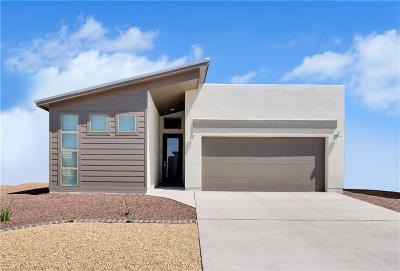 El Paso Single Family Home For Sale: 14712 Boer Trail Avenue